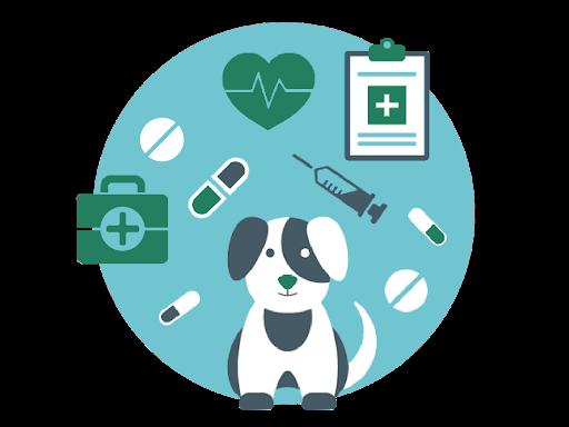 Réseau professionnel et de clientèle pour les vétérinaires