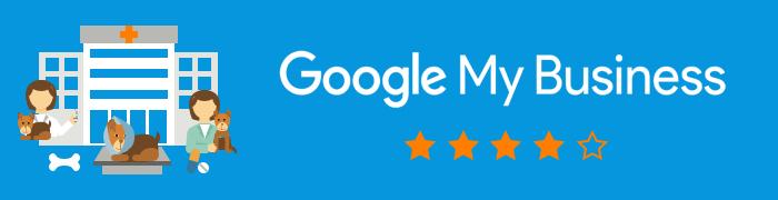 Comment récupérer les droits d'accès de ma fiche clinique vétérinaire sur Google My Business ?