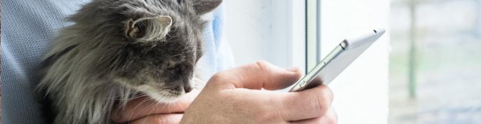 Un site internet pour votre clinique vétérinaire ?