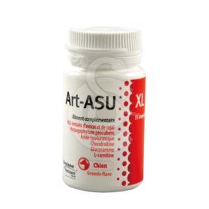 Art-Asu XL
